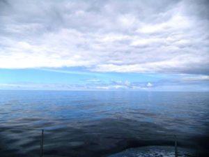 """""""Schweinswalwetter"""" auf dem Atlantik"""