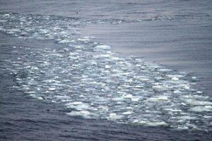 Das erste Eis auf der Reise :-)