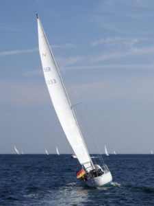 Ein schlankes Boot mit hohem Rigg - die Avance 36